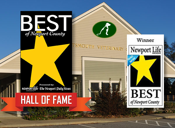 Best of Newport Winner and Hall of Fame Veterinarian