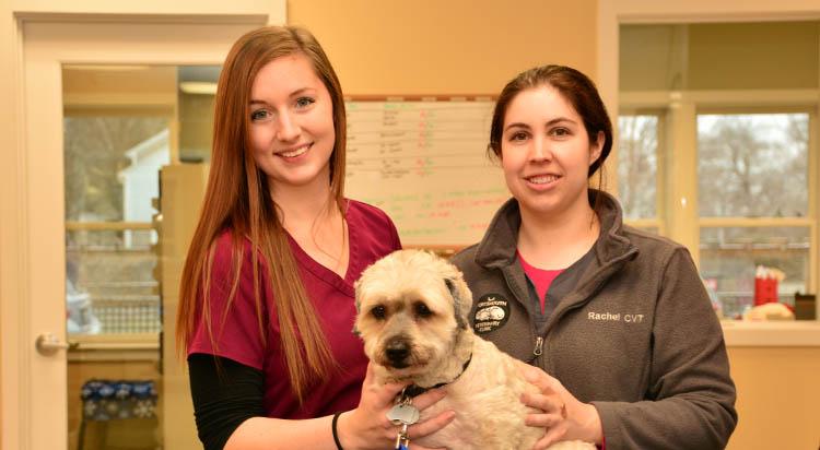 portsmouth-veterinarian_0014_IWC_2344